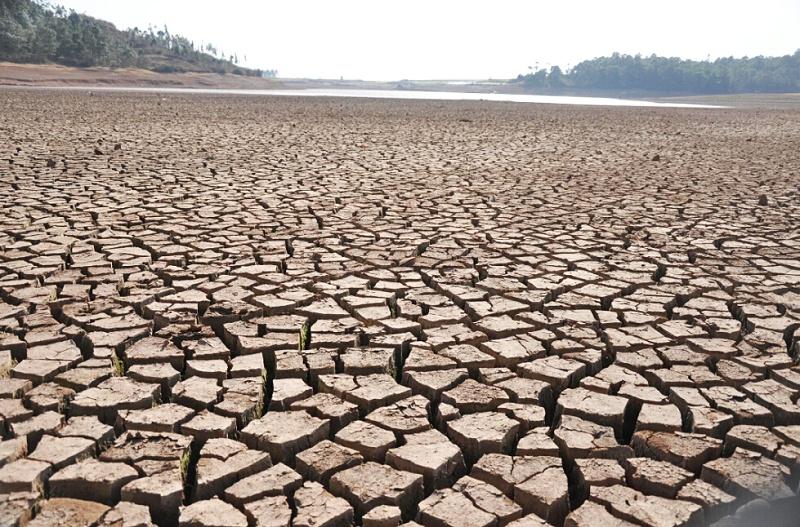 世界防治荒漠化与干旱日